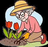 Großmutter 70 Jahre Gartenarbeit