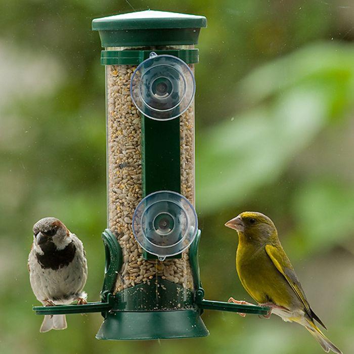 Geschenk für einen Vogelliebhaber - Fenster Futtersäule