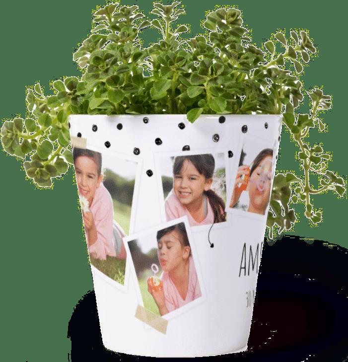 Geschenkidee für Oma von Enkelkinder - Blumentopf mit Foto